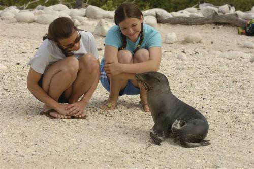Encontros inesquecíveis em Galápagos